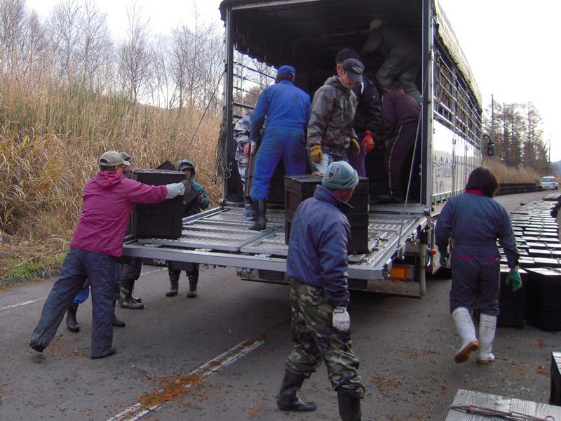 http://kajuen.net/senboku/blog/images/2008/2008-11-13.jpg