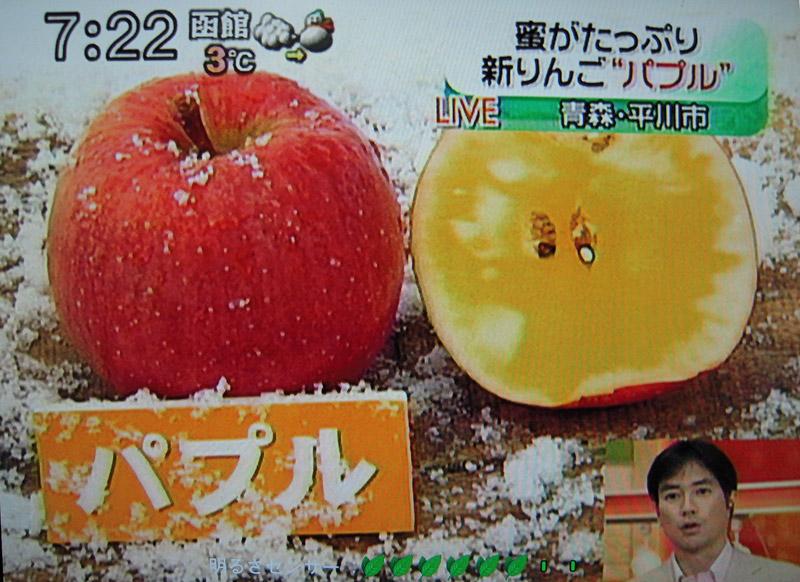http://kajuen.net/senboku/blog/images/2008/2008-11-19.jpg