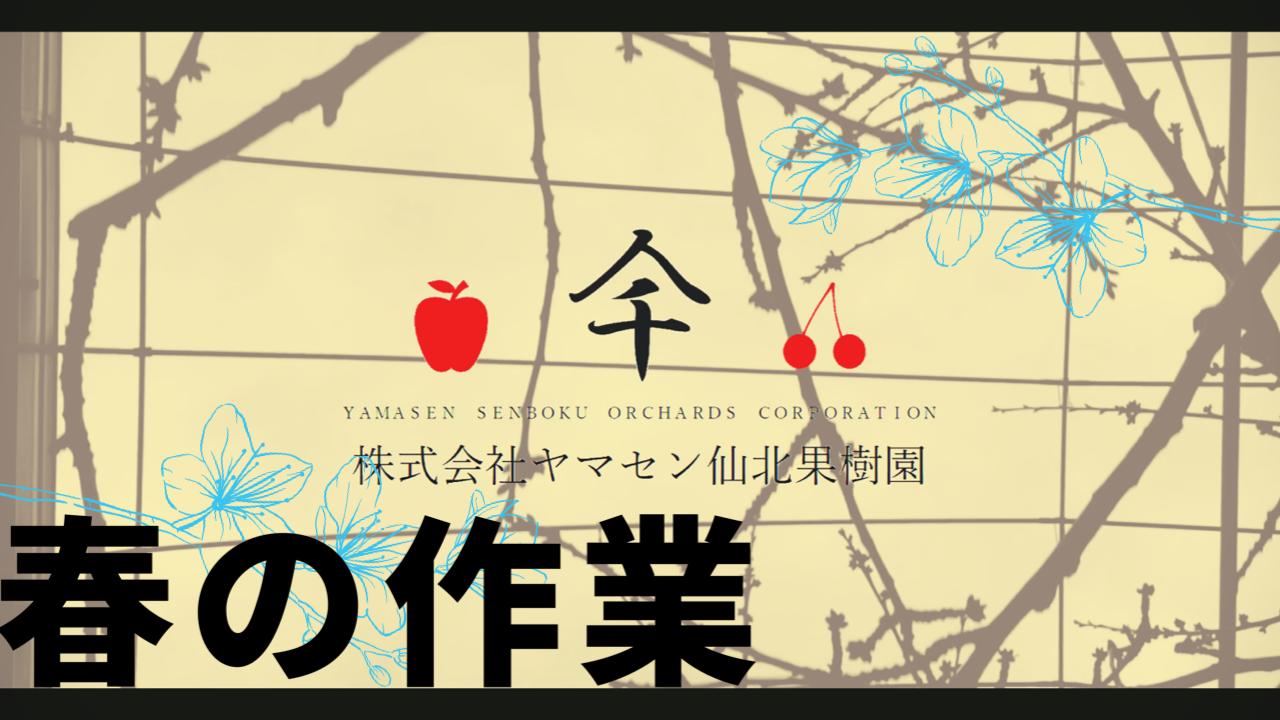 """【Youtube】""""春""""の作業【ヤマセン仙北果樹園】投稿しました"""