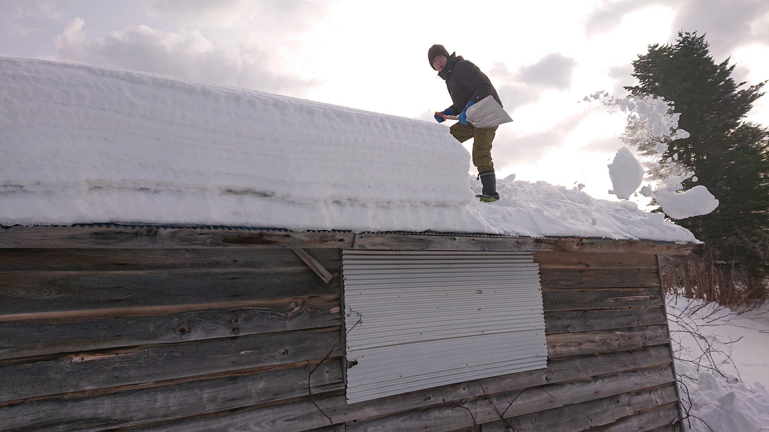 屋根雪降ろし。腰辛し。